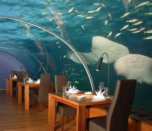 ithaa undersea restaurant maldives resorts a restaurant underwater in the maldives sea
