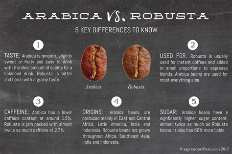 caffeine espresso vs koffie arabica vs robusta coffee beans 5 key differences