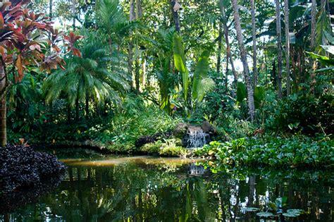 hawaii botanical gardens flickr photo