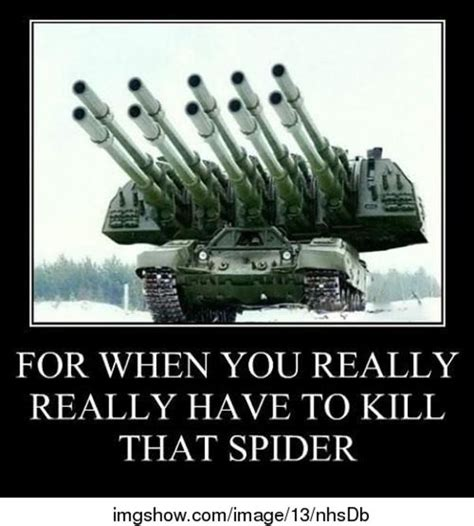 Overkill Meme - i hate spiders overkill know your meme