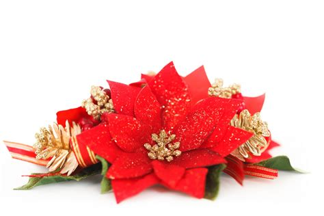 Decorations Poinsettia - poinsettia decoration free stock photo domain