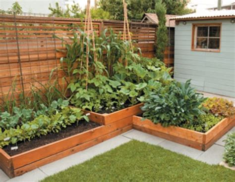 raised beds small space gardening pinterest