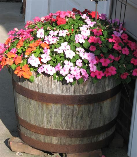 Barrel With Planter by 25 Beautiful Whiskey Barrel Planter Ideas On