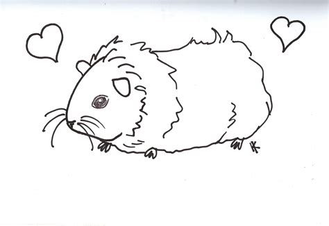 Coloring Page Of A Guinea Pig | free coloring pages of guinea pig