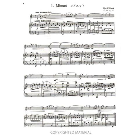 How Many Suzuki Piano Books Are There Suzuki Flute School Piano Accompaniment Volume 2 Shar