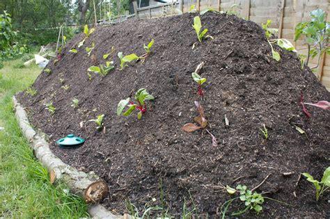 hugelkultur bed build a survival garden using hugelkultur shtf