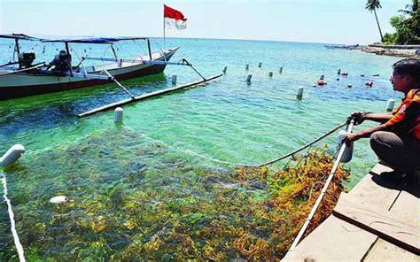 potensi ekonomi produktif daerah pesisir indonesia