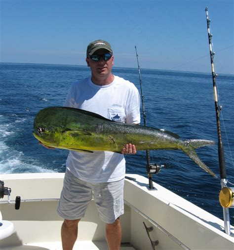 party boat fishing rehoboth reel hot sportfishing charters virginia beach vacation guide