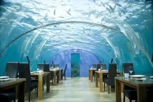 Cool Hotels Dubai Hotels Water Cool Photos World