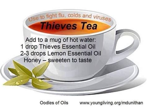 how to get rid of thieves in a room 17 best images about living essential oils on time flu and
