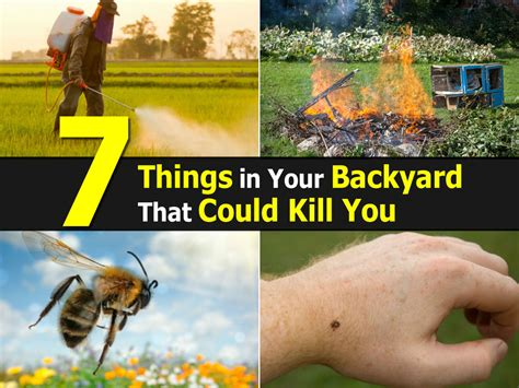 7 Things That Could Be Killing Your Libido by 7 Things In Your Backyard That Could Kill You