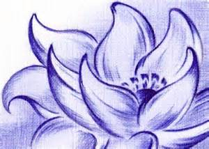 Lotus Blossom Drawing Lotus Blossom By Sultzaberger On Deviantart