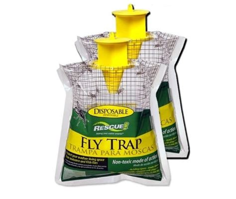 how to trap house flies how to trap house flies 28 images get rid of gnats in house apple cider vinegar
