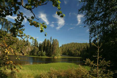 Imagenes De Bosques Increibles | hab 237 a una vez un pa 237 s en un bosque finlandia
