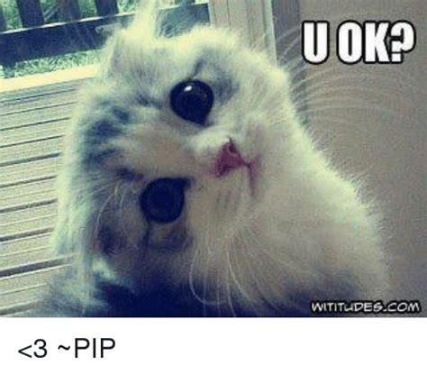 U Ok Meme - u ok wititudes com