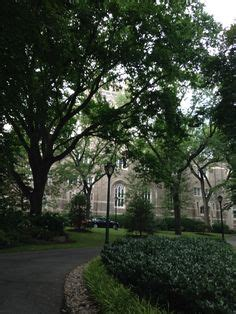 Fordham Mba Average Salary by Community Post The Most Winter Wonderful College Cuses