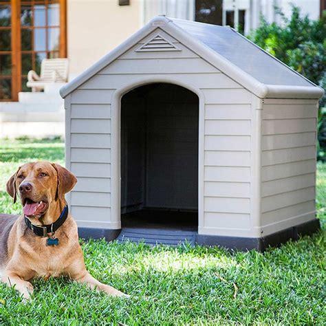 gabbie per cani da esterno gabbie per cani da esterno