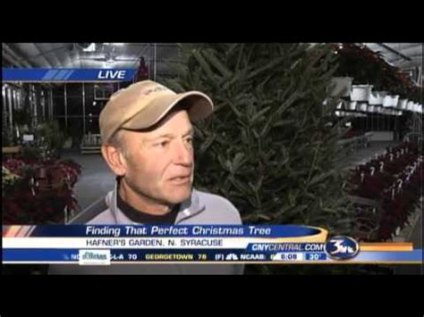 chuck hafners christmas trees chuck hafner explains the differences between types of trees