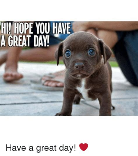 Have A Great Day Meme - have a good day dog meme www pixshark com images