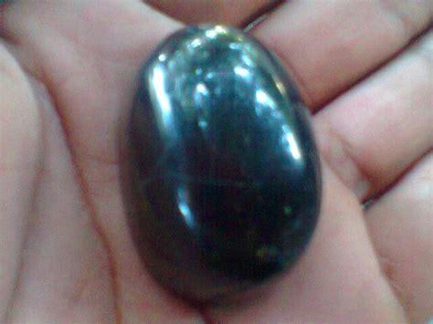 Mustika Kelor Fosil Kelor Galih Kelor koleksi benda bertuah mustika galih kelor asli