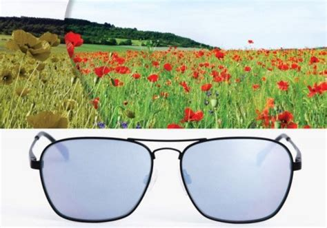 enchroma color blind glasses true color is available for the color blind with enchroma