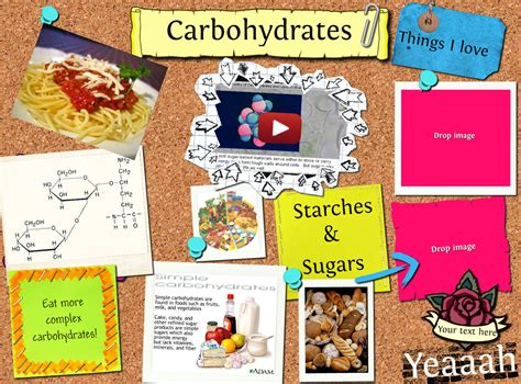carbohydrates 4th grade glogster a glog is like a poster only better ms