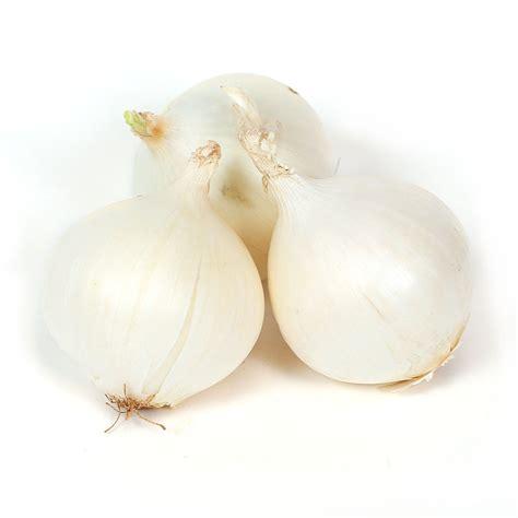 white onions lb  hispanic wholesale distributor