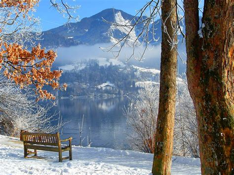 imagenes para fondo de pantalla invierno sunny winter day wallpaper wallpapersafari