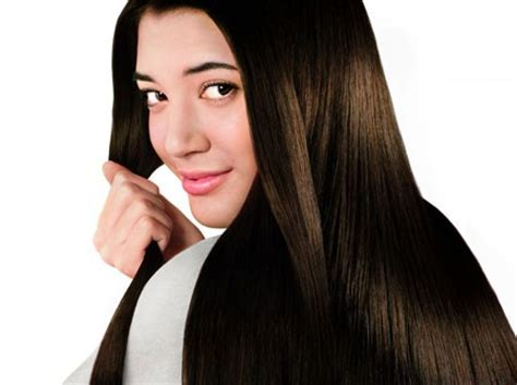 download hair loss black book free hair loss black book review just another scam