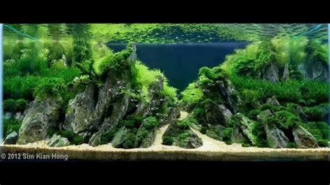 top   aquascape aquariums akvaryum