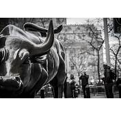 Wall Street Bull Wallpaper 61  Images