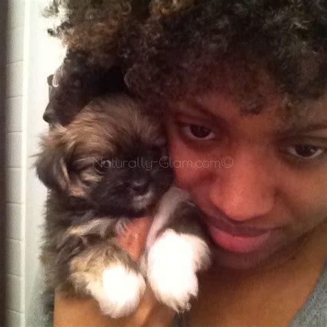 what to expect with a puppy what to expect when your has puppies naturally glam