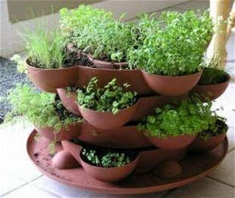 how to plant a container herb garden eat live grow paleo growing your own herbs and sprouts