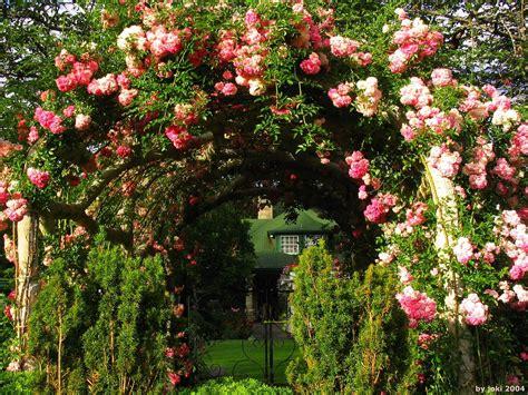 Garden Flower Arch Garden Arches Beautiful Botanical Garden Roses 190235