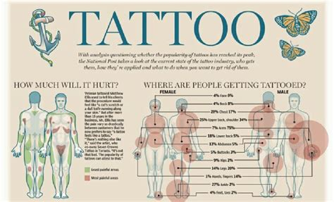 facts about tattoos interesting facts musely