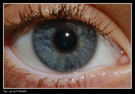 Imagenes De Ojos Zoom | los marginados argentina en positivo ojo por ojo