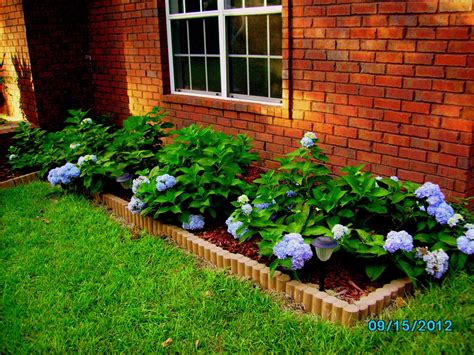 flower beds for beginners alabama rose and flower garden from a non green thumb diy