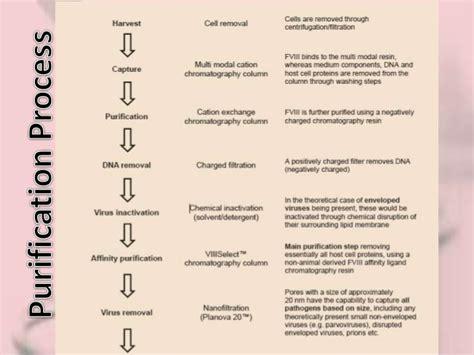 recombinant protein factor viii