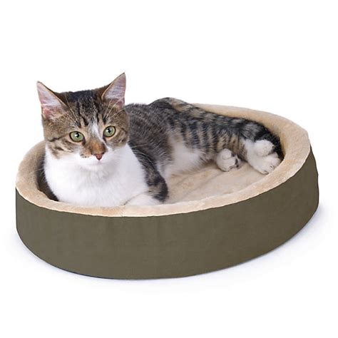 cat beds petsmart thermo kitty bed cuddle up heated cat bed cat heated