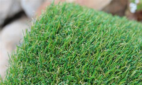 is grass for dogs artificial grass for dogs artificial grass arizona