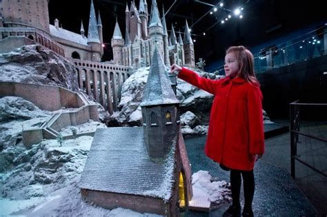 All Comments On Harry Potter Owned A Snow Owl This Is A - winter on its way as harry potter casts his own spell of