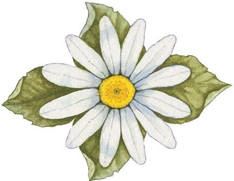 imagenes de flores para imprimir gratis 17 best images about a emb mandalas dot rangoli on