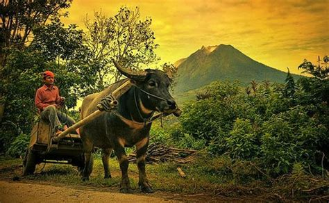 17 best images about indonesian 17 best images about indonesia on pinterest beautiful