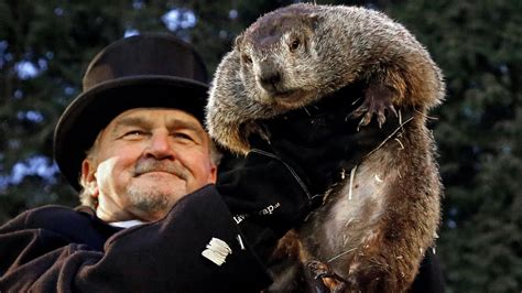 groundhog day australia climate change will kill the groundhog day groundhog