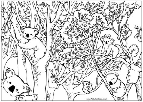 Free The Aboriginal Animals Coloring Pages Aboriginal Animal Colouring Pages