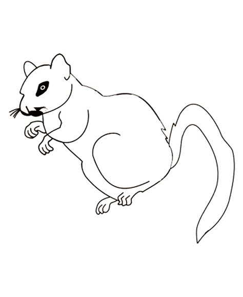 free coloring pages of gerbil