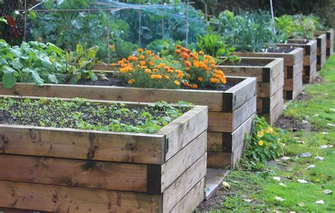 how deep should a raised garden bed be the techniques and benefits of gardening in raised beds
