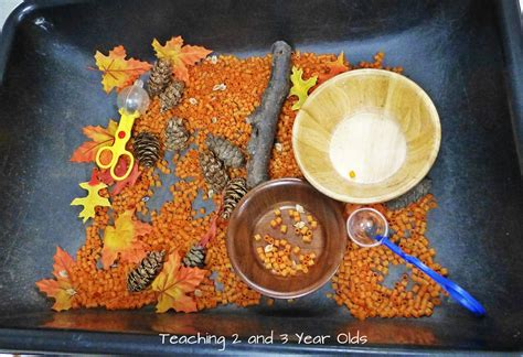 teaching 2 and 3 year olds a collection of sensory table