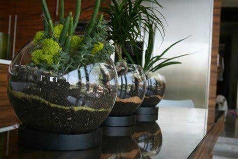 Ideas For Indoor Potted Plants Design Cool Modern Terrarium Design Ideas