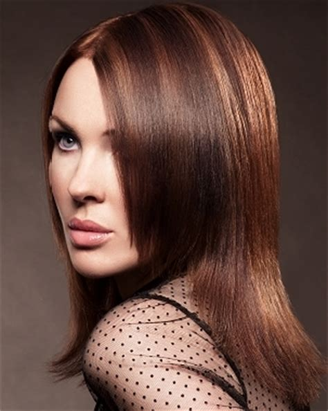 Different Types Of Hair Highlights by Stylish Hair Highlighting Types Auto Design Tech